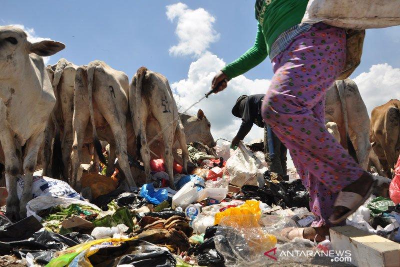 Pemulung mengais barang bekas di pembuangan Kawatuna