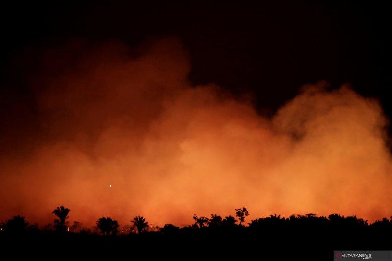 Terbakarnya hutan Amazon meresahkan dunia