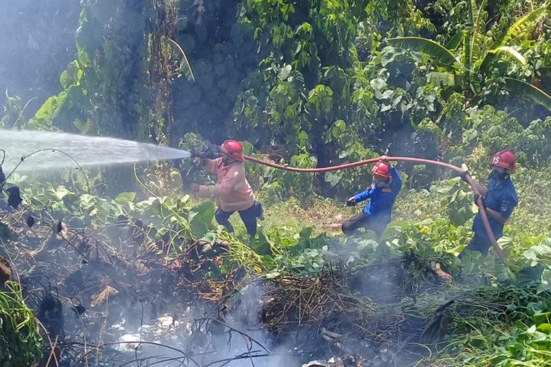 Belasan kasus kebakaran lahan terjadi di Kabupaten Minahasa