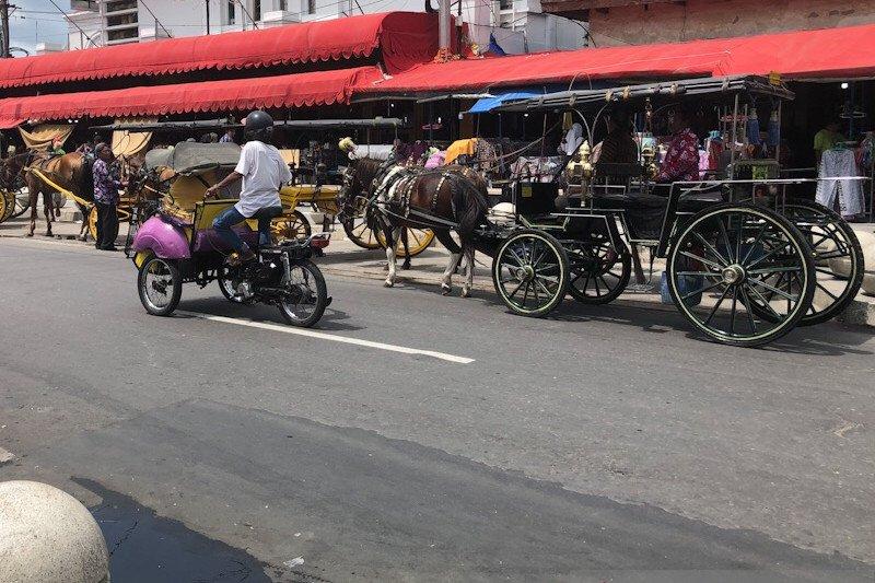 Yogyakarta menyiapkan revisi peraturan daerah tentang moda transportasi