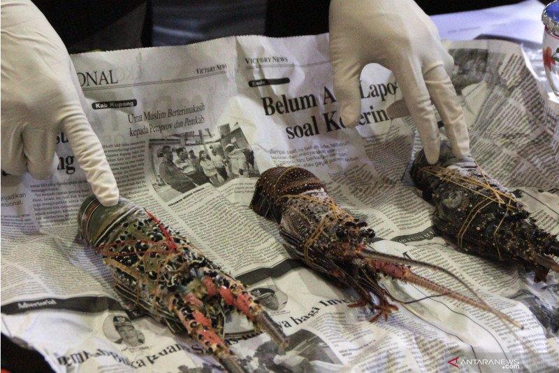 Polisi amankan  nelayan asal NTB di Kupang
