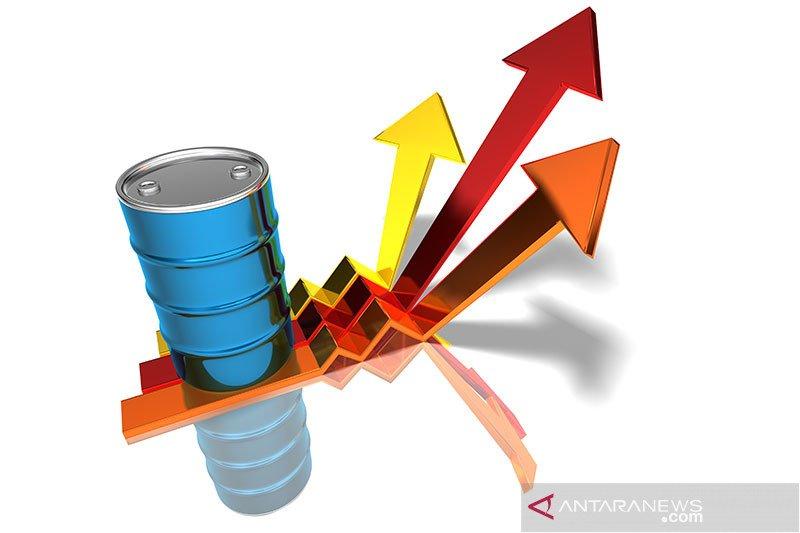 Harga minyak mentah AS melonjak ke level tertinggi