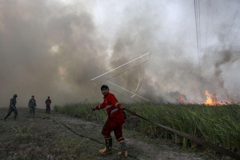 Polres Ogan Komering Ilir  tangkap sembilan tersangka pembakar lahan
