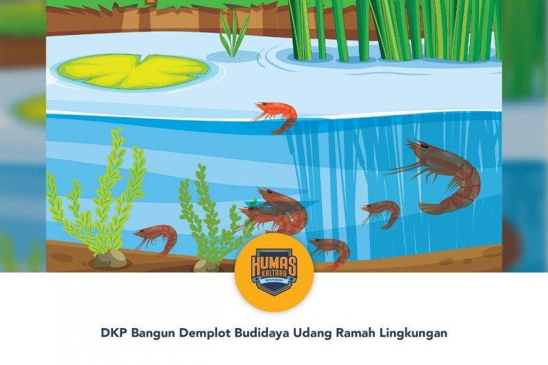 DKP Bangun Demplot Budidaya Udang Ramah Lingkungan