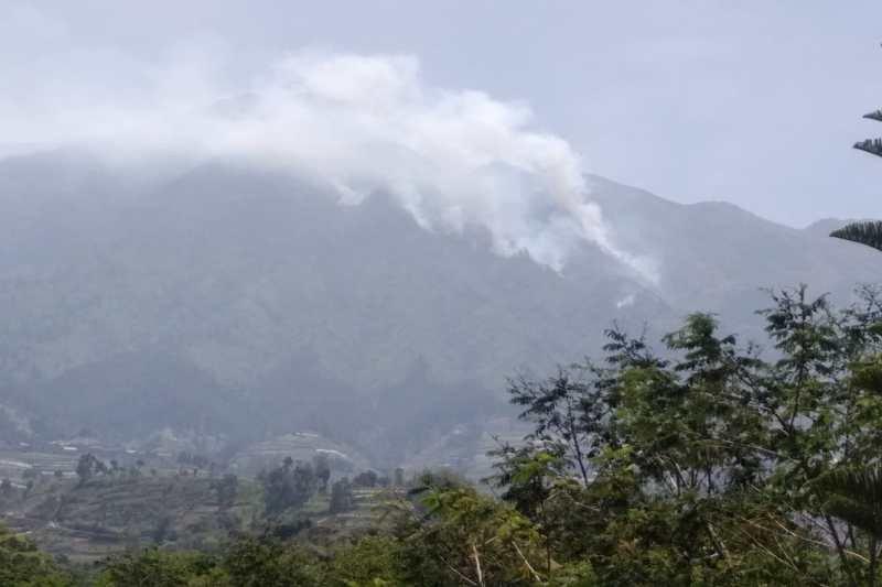 Kebakaran hutan di Gunung Merbabu meluas