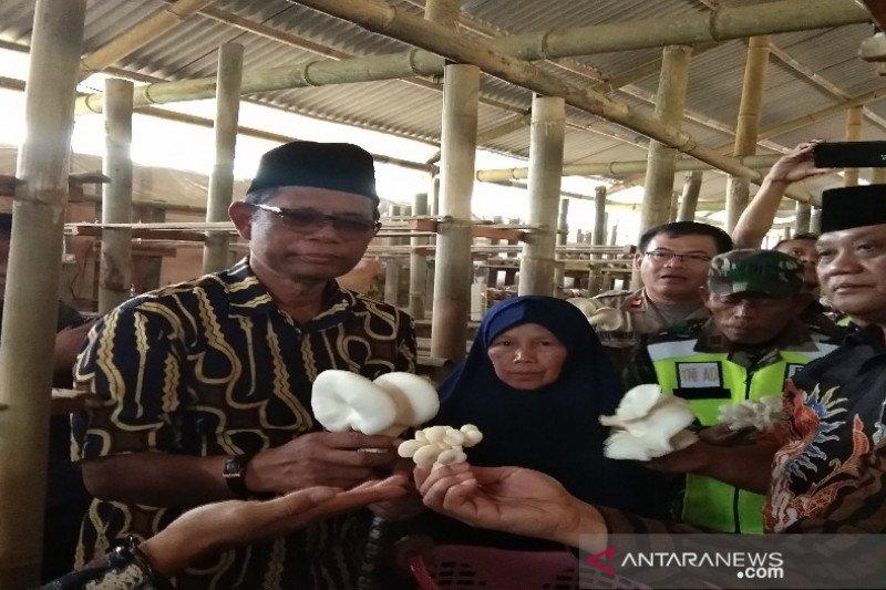 Lembaga Kemanusian Dompet Dhuafa kembangkan budi daya jamur di Batang