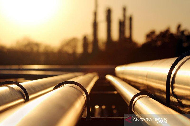 Harapan tinggi atas perdagangan AS-China dongkrak harga minyak