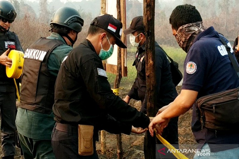 Gubernur tak miliki kewenangan mencabut izin korporasi perkebunan di Kalteng
