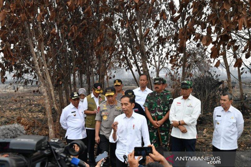 Karhutla Riau - Jokowi tegaskan pentingnya upaya pencegahan Karhutla