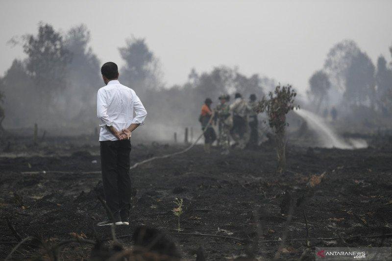 Presiden Jokowi khawatir penggantian pejabat pengaruhi penanganan karhutla