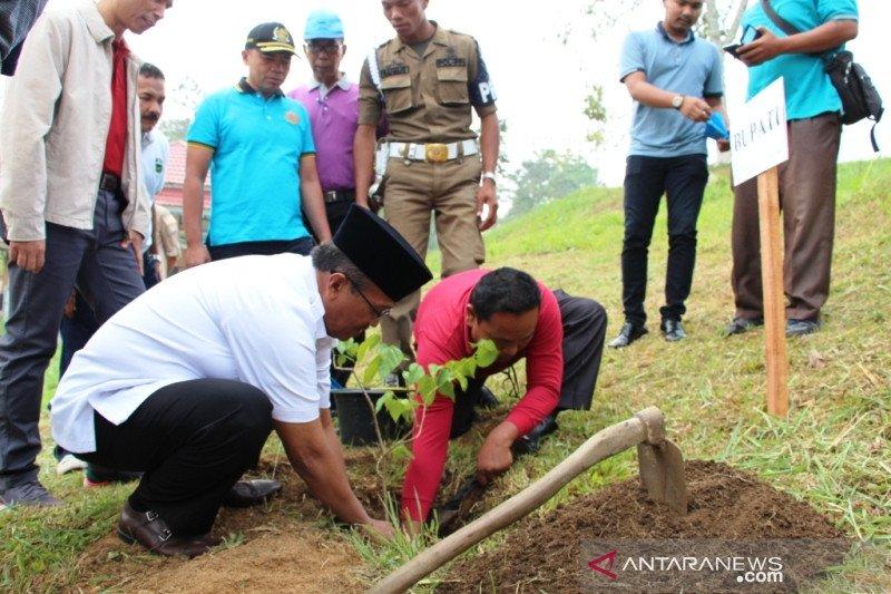 Peringati Hari Lingkungan Hidup, Pemkab Solok tanam pohon Andalas