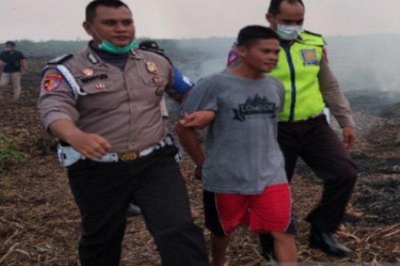 Seorang pelaku pembakar lahan tertangkap tangan polisi di Kalsel