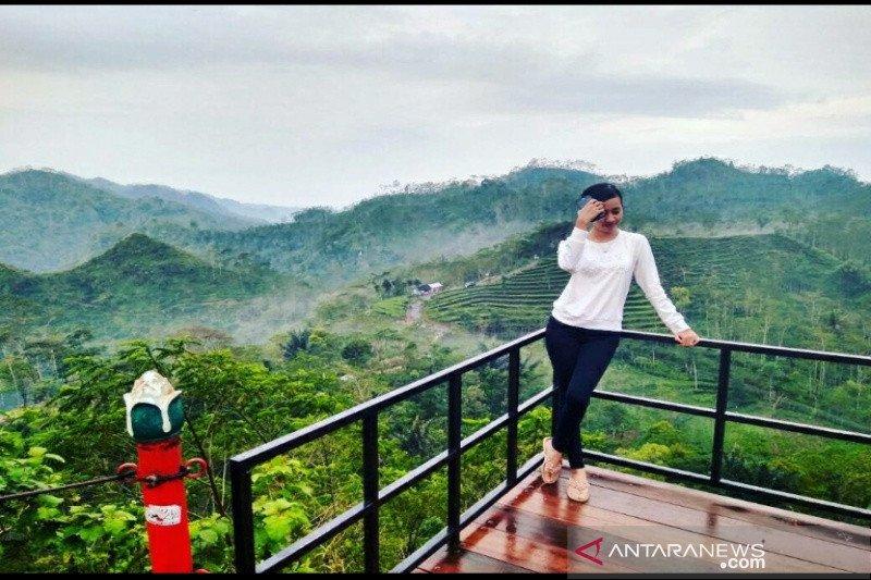 Dispar Kulon Progo membina objek wisata selfie
