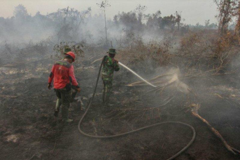 Kota Tomohon mengoleksi 27 kasus kebakaran lahan