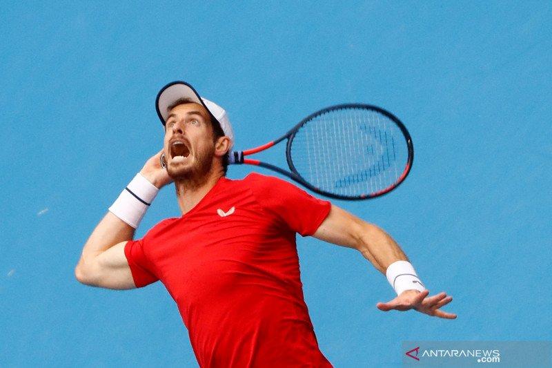 Cedera, Murray mundur dari Australia Open