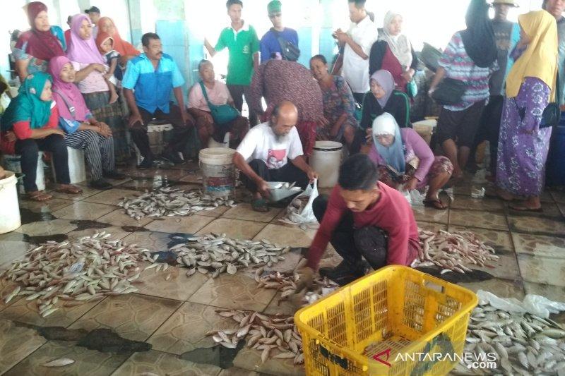 Nelayan Jepara keluhkan hasil tangkapan turun