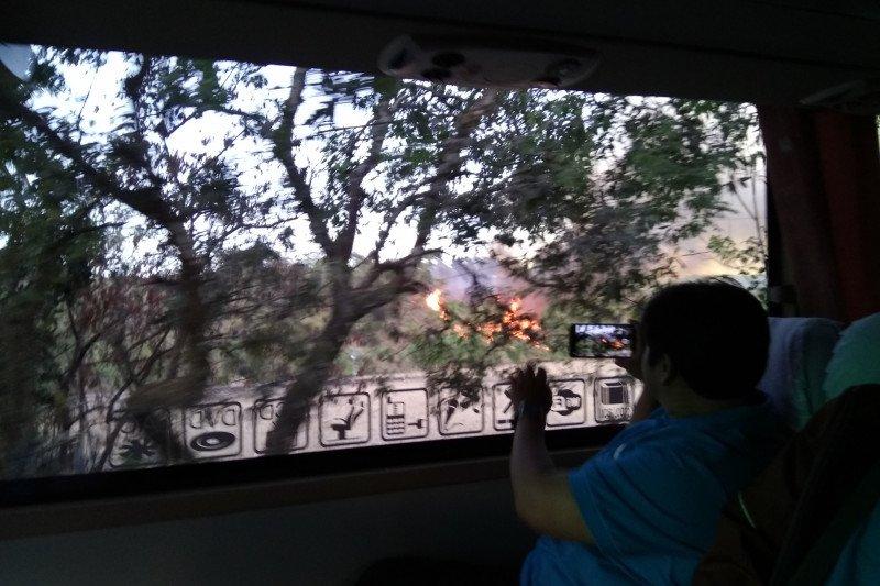 "Tim PPNS KLHK limpahkan perkara ""illegal logging""  ke Kejari Mamuju"