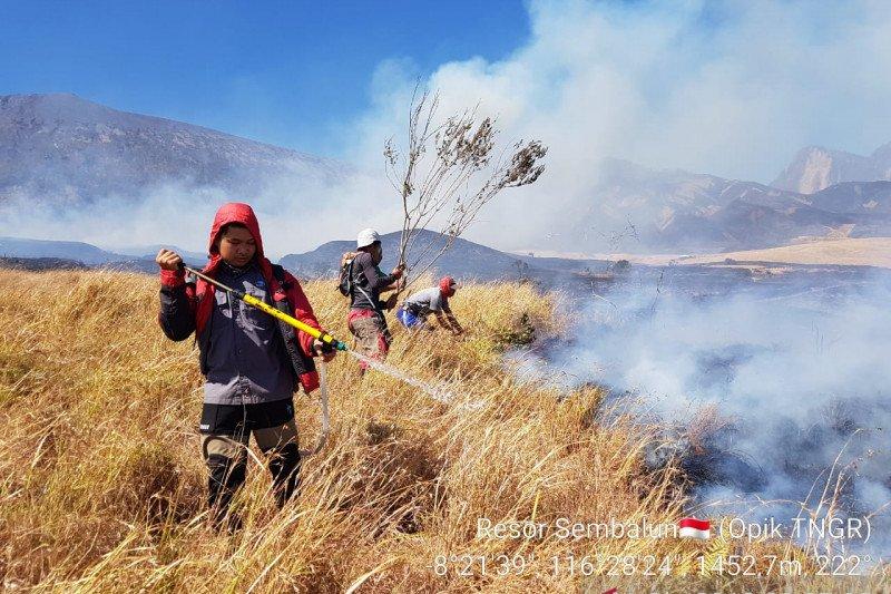 245 personel gabungan dikerahkan padamkan kebakaran hutan Gunung Rinjani