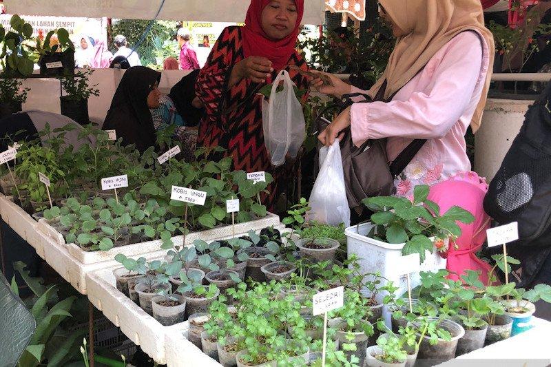 Pemkot Yogyakarta dorong kampung buat taman sayur