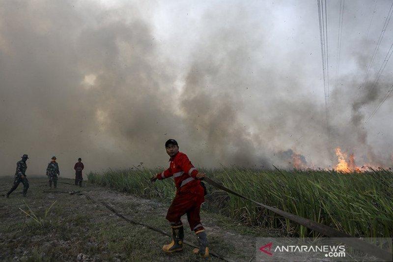 Pemadaman kebakaran lahan di  Sumsel terkendala kanal-embung kering