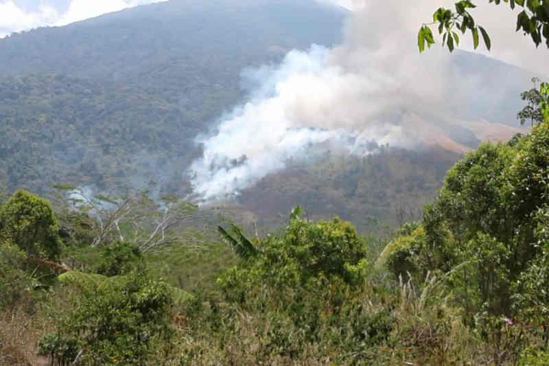 Kebakaran di kawasan Gunung Ciremai semakin meluas