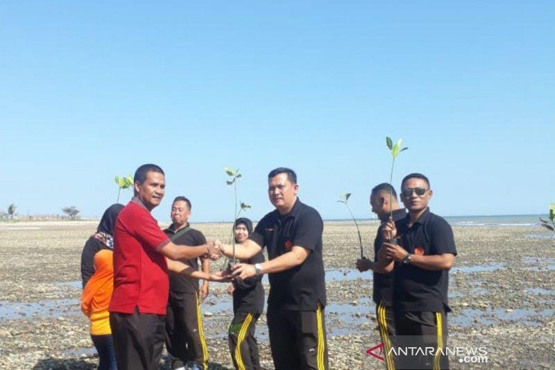 Warga Mata Air tanam 2.800 pohon bakau di Pantai Sulamanda