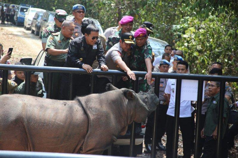 Gubernur Arinal komit lindungi badak sumatera