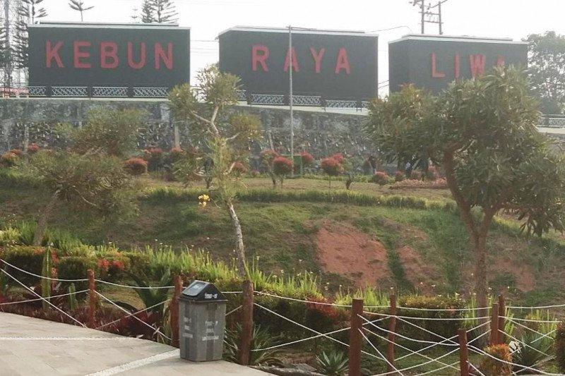 Kebun Raya Liwa, etalase hutan hujan tropis TNBBS di Provinsi Lampung