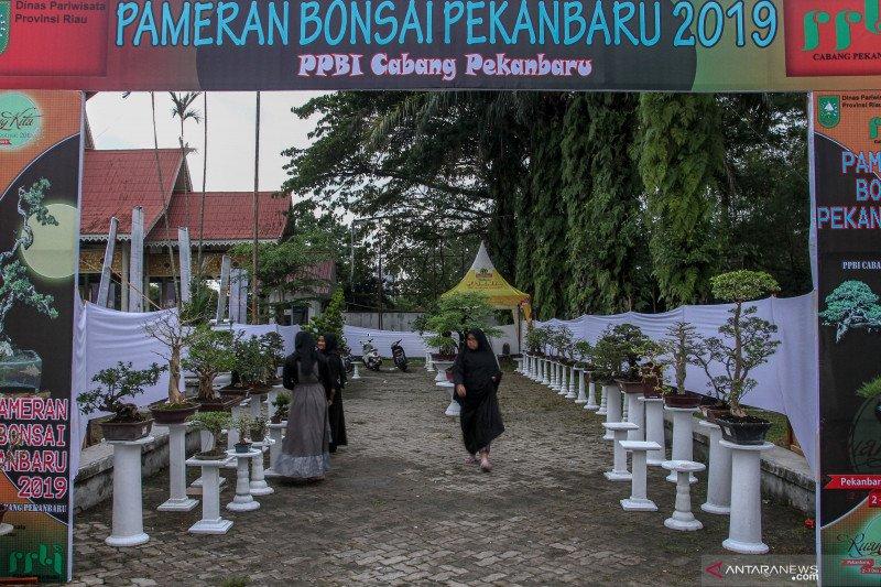 Pengusaha pameran di Riau minta keringanan pajak dampak COVID-19, begini penjelasannya