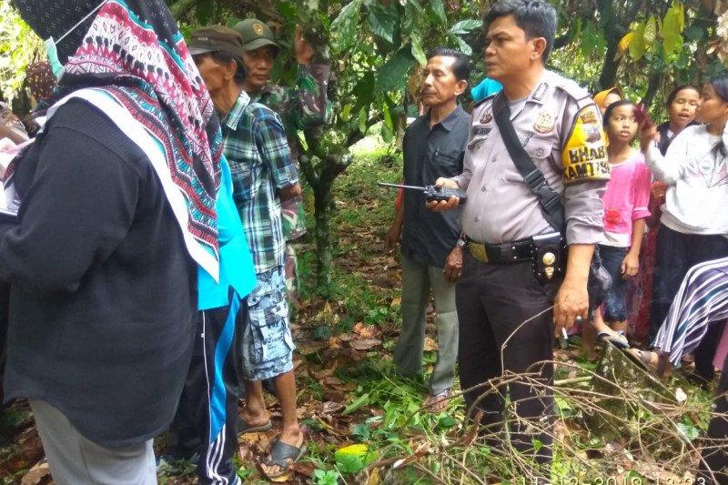 Ibu muda di Agam ditemukan tergantung di pohon kakao