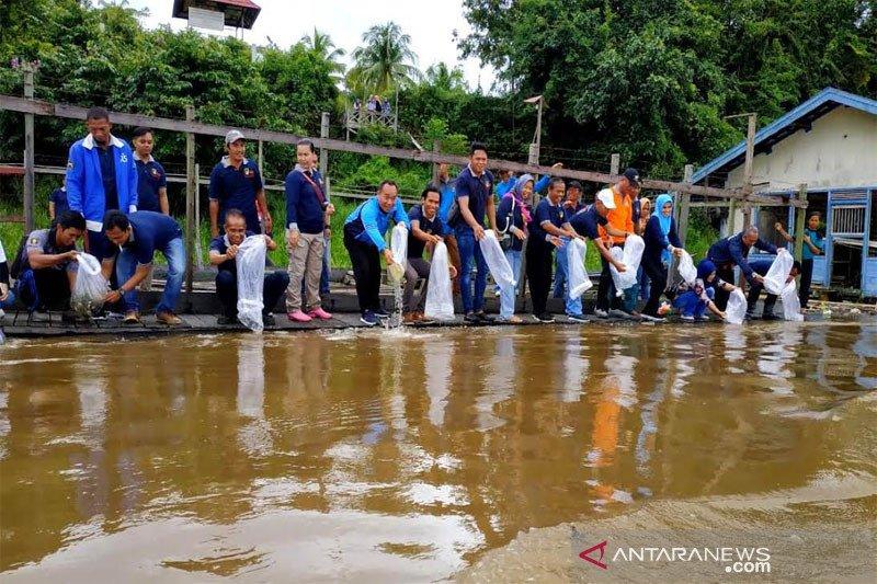 Barut  tebar 15 ribu bibit ikan di  Sungai Barito