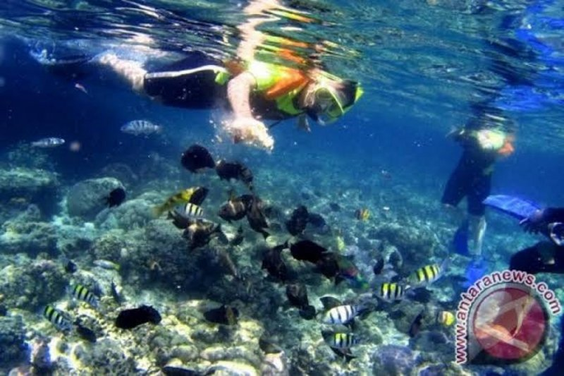 Penguasaan bahasa Mandarin sangat dibutuhkan kembangkan wisata Sulut