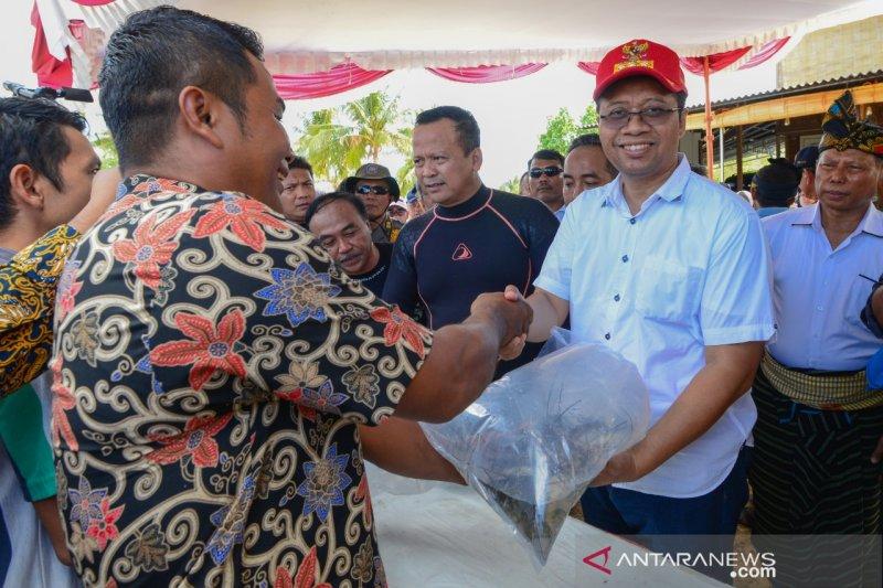 Gubernur NTB harapkan peternak lobster sejahtera setelah lima tahun puasa