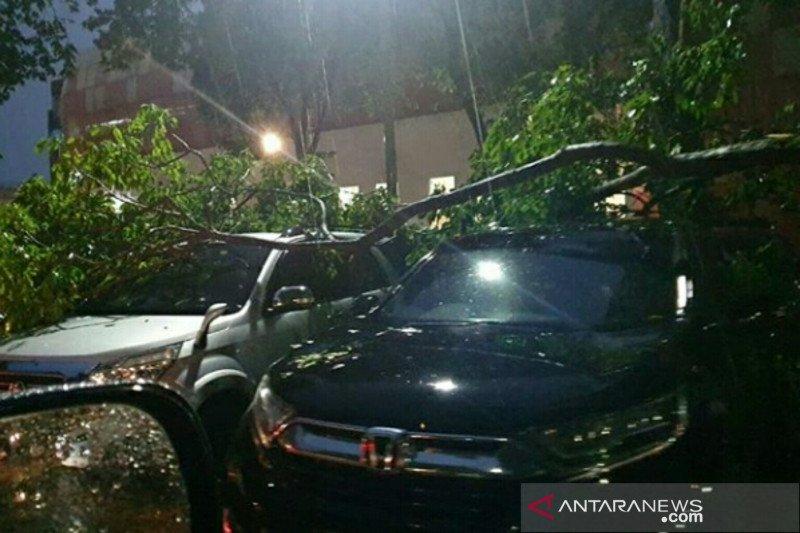 BMKG: hujan ekstrem palembang  dipengaruhi badai tropis phanfone