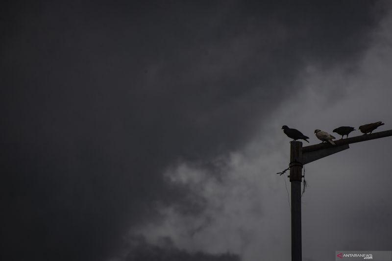 Hujan lebat berpotensi terjadi di Lampung