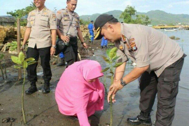 Polda Sulbar tanam 6.700 bibit pohon mangrove