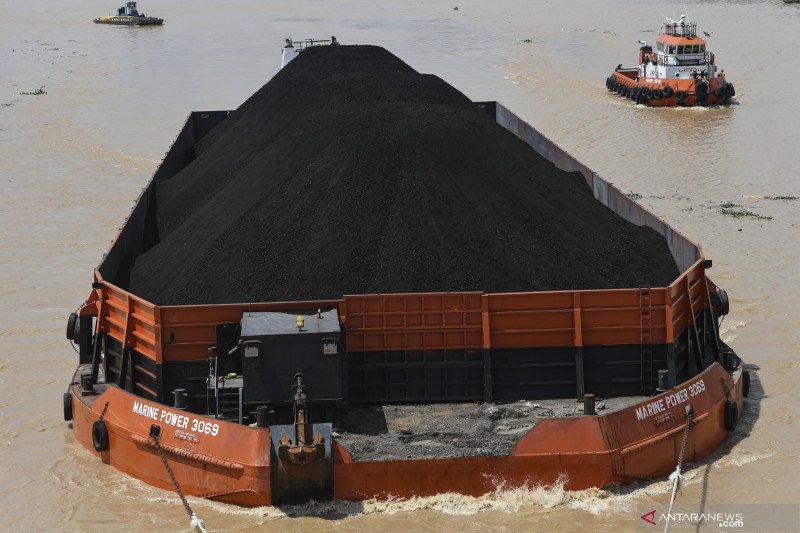 Perdagangan batu bara tak berpengaruh merebaknya virus corona