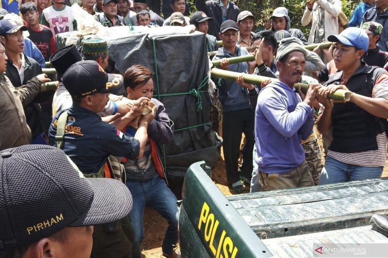 Harimau yang masuk perangkap di Muara Enim dievakuasi  ke Lampung