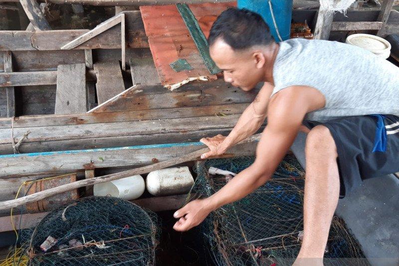 Limbah sebabkan matinya ikan di perairan Kawal Bintan
