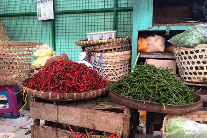 Harga cabai rawit merah di Yogyakarta mencapai Rp80.000/kg