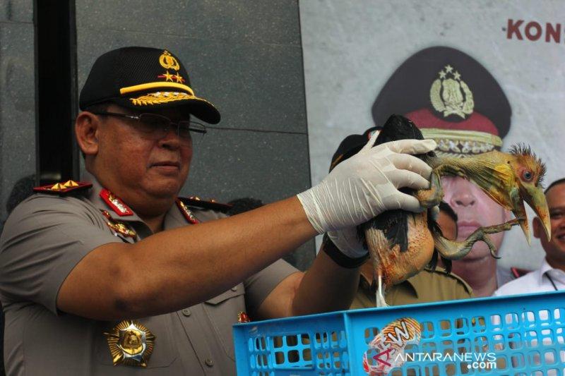 Penyelundupan ratusan satwa dilindungi senilai Rp1,5 miliar digagalkan polisi