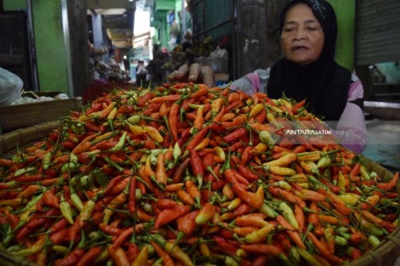 Harga cabai tembus Rp60 ribu perkilogram di Makassar