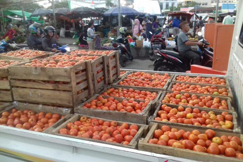 Kesejahteraan petani sayur di Sulut turun