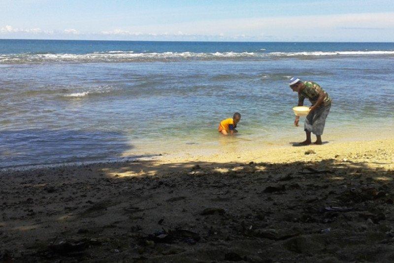 Peneliti sebut pesisir Sarmi kaya sumber daya perikanan-kelautan