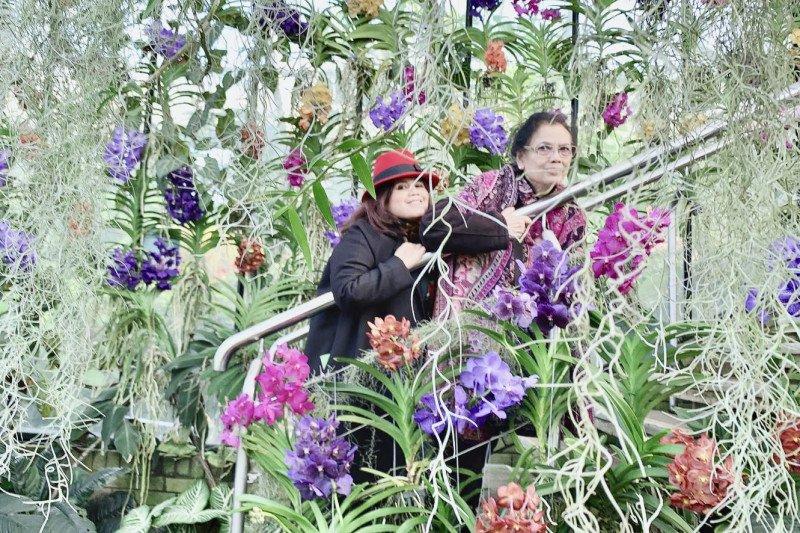Pengunjung Kew Gardens  kagumi  anggrek Indonesia