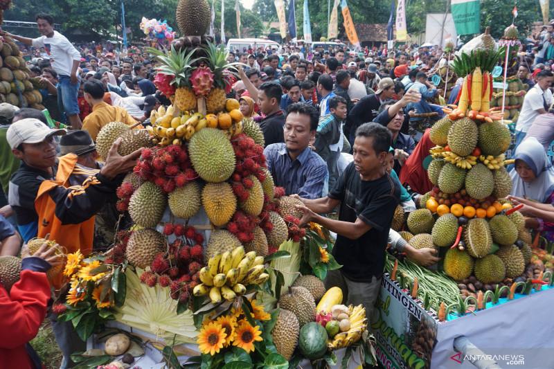 Festival Durian, Pemprov Sumbar dorong munculnya durian unggulan Solok Selatan