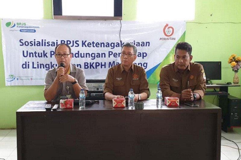 5.000 petani penyadap karet di Cilacap dilindungi BPJAMSOSTEK