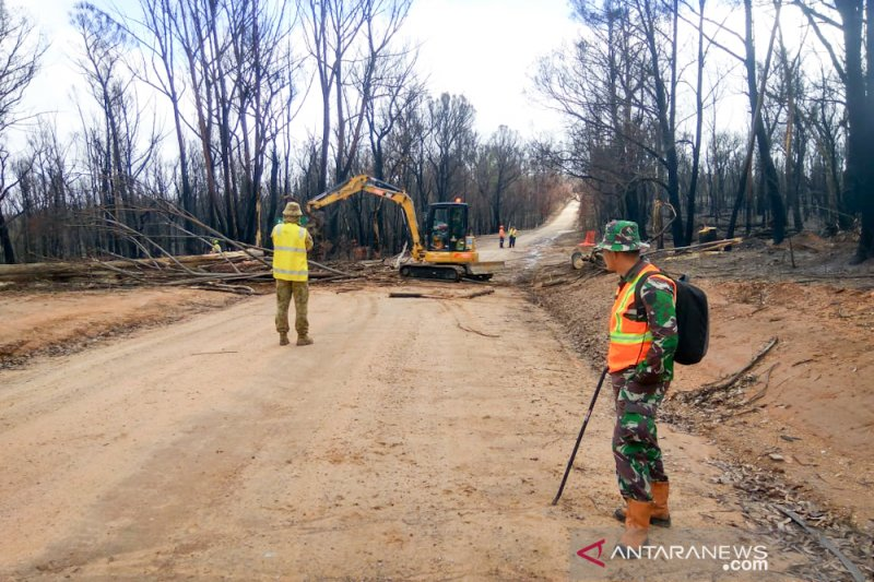 Indonesia bantu bersihkan lahan bekas kebakaran hutan di Australia