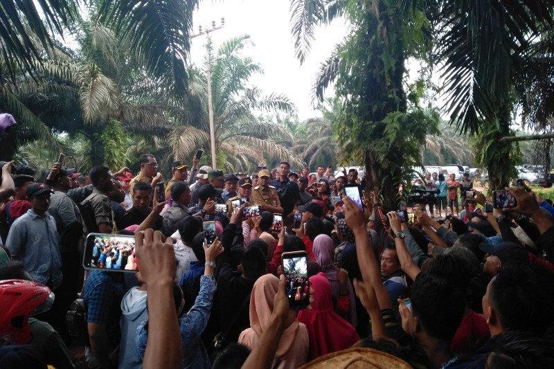 Diduga bermasalah, Gubernur Kalteng perintahkan PT SSM hentikan aktivitas