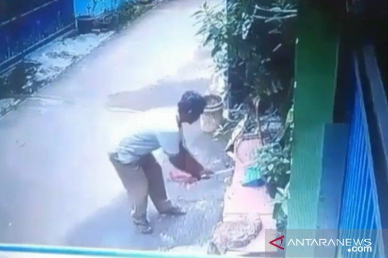 Sopir angkot pemukul kucing sampai mati dilaporkan ke polisi